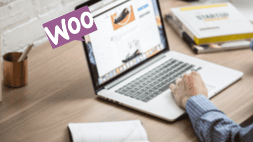 Examples of good SEO WooCommerce sites